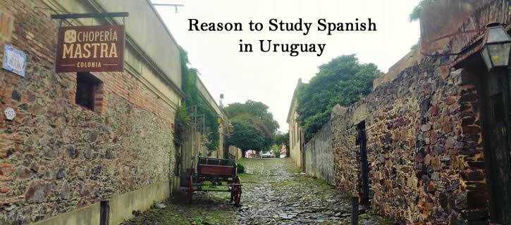 Reasons to Study Spanish in Uruguay!